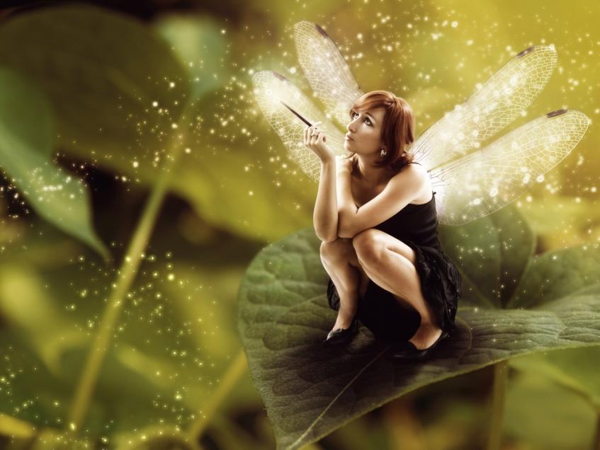 good fairy on leaf