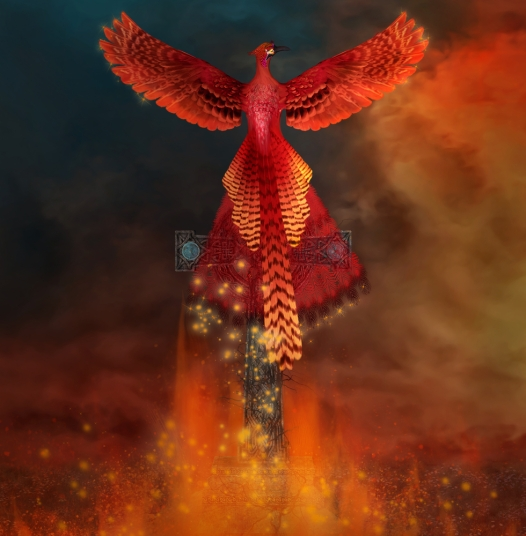 burn out phoenix