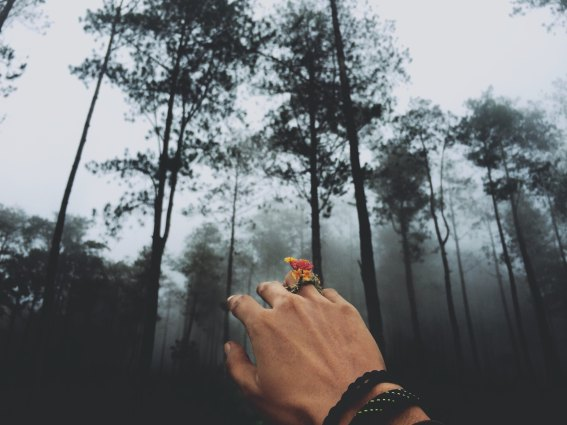yohanes-dicky-yuniar-102573 hand with flower ring in forest