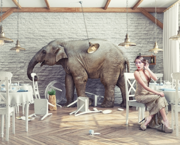 elephant in room shutterstock_333634433